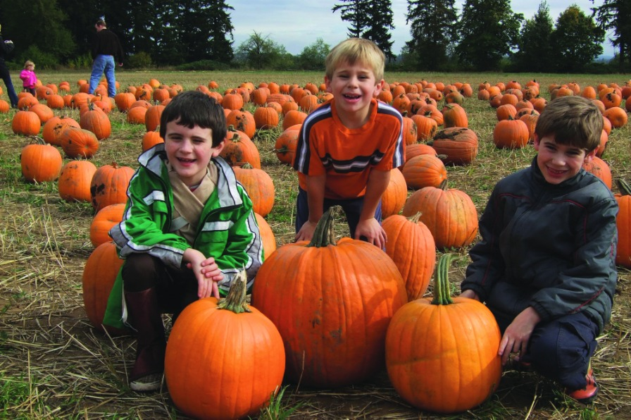 boys with pumpkins from Fir Point Farms