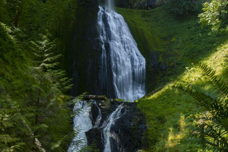 Pup Creek Falls along the Clackamas River