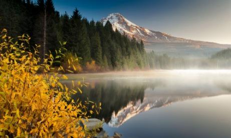 Mt. Hood reflecting on Trillium Lake in the autumn