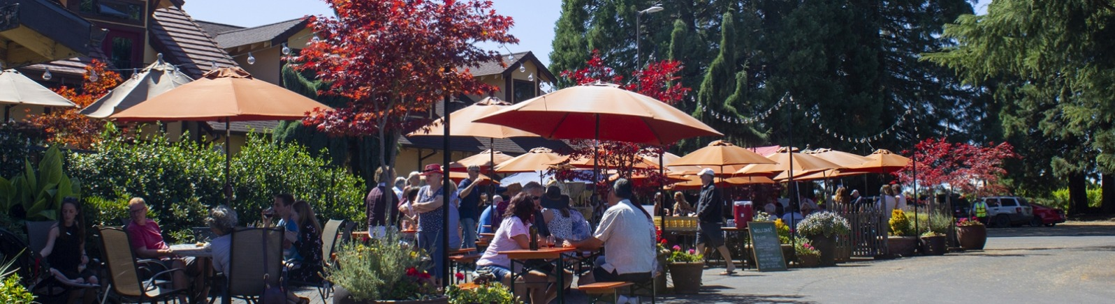 Summer event at St. Josef's Winery