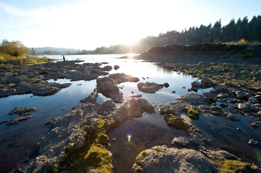 Elk Rock Island, Willamette River
