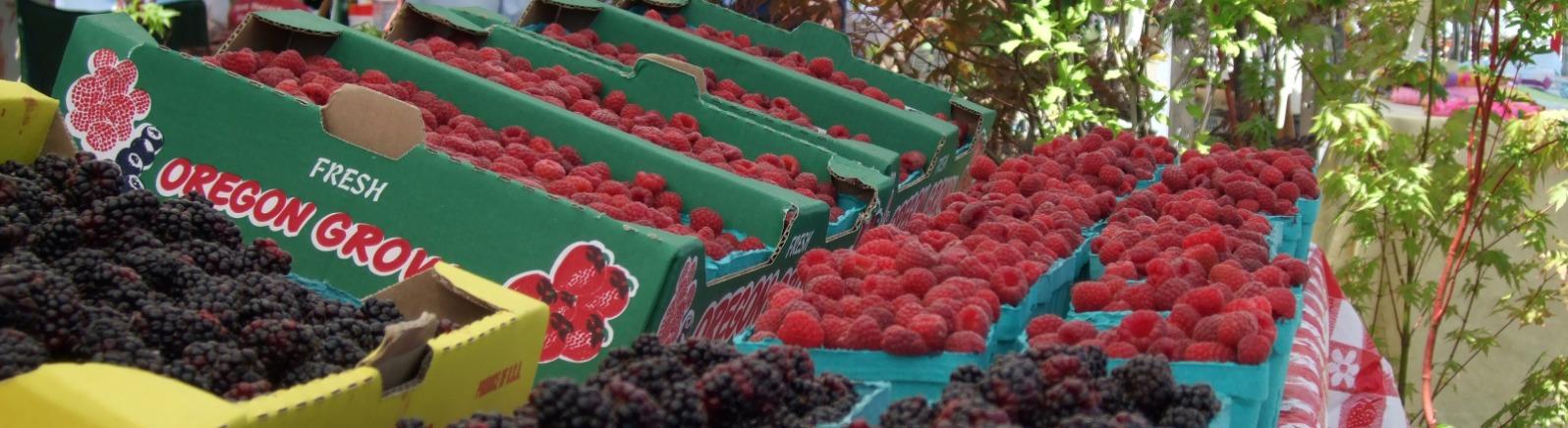 Boring Farmer's Market berries