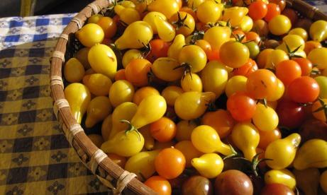 Heirloom Pear Cherry Tomatoes