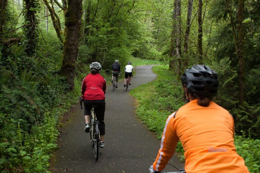 Biking Forest Trails