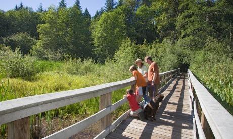 Wildwood Recreation Site, Wetland Boardwalk Trail