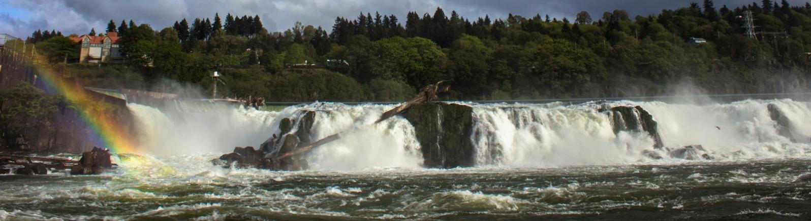 Willamette Falls, Rainbow