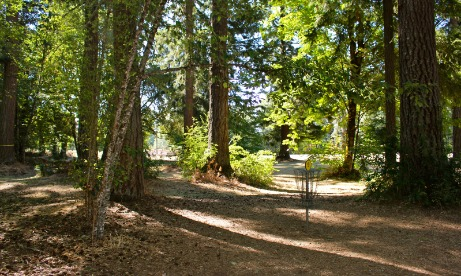 Disc Golf, Timber Park, Estacada