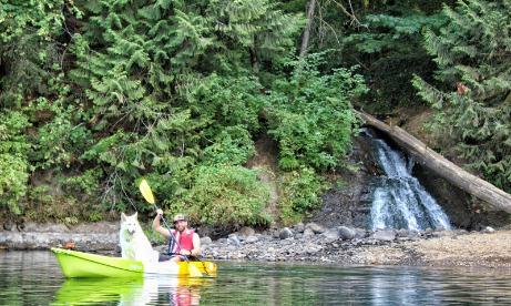 Estacada Lake Kayaker and Dog near Waterfall