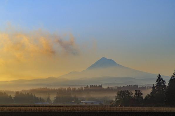 Mt Hood Sunrise in the Mist