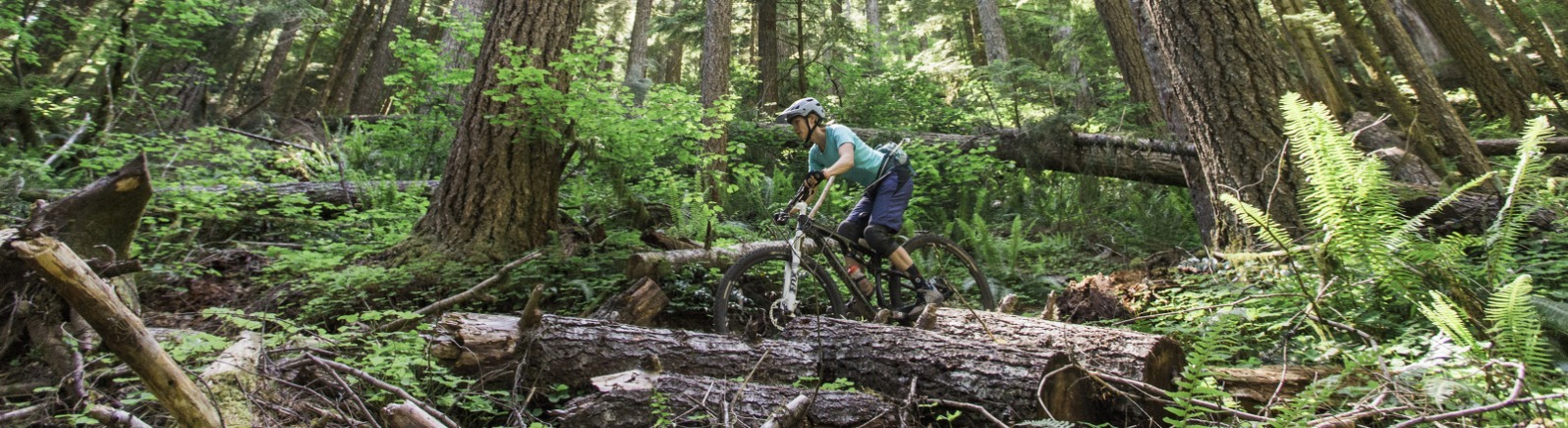 Female Mountain Biker on Forest Trail