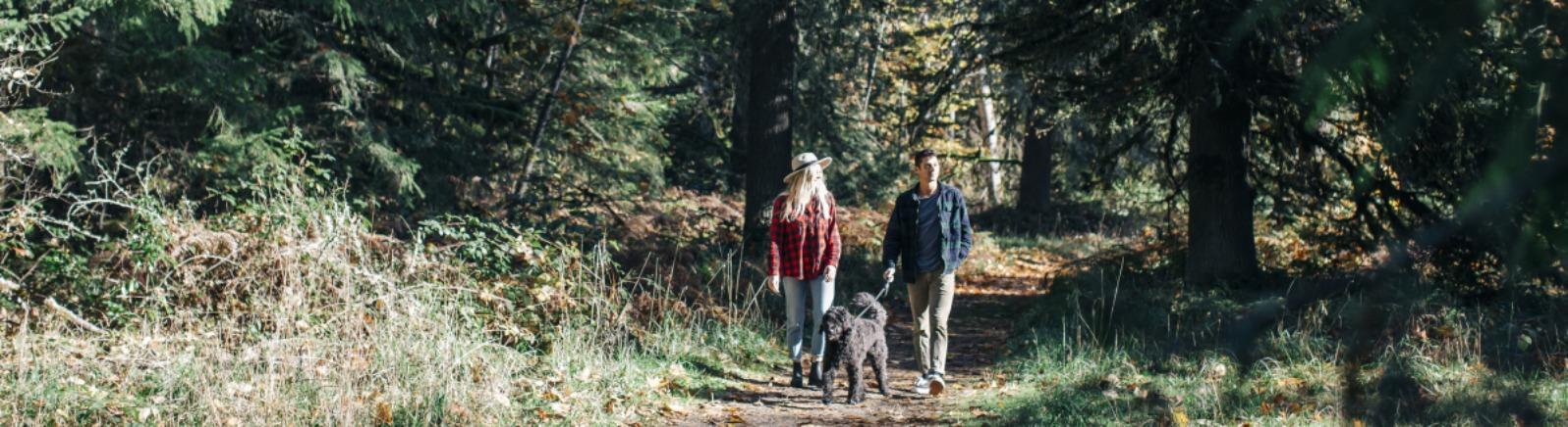Milo McIver Park walking trail in Estacada