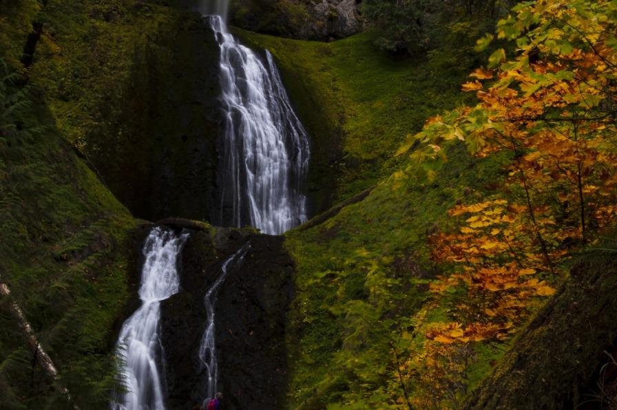 Pup Creek Falls and fall color