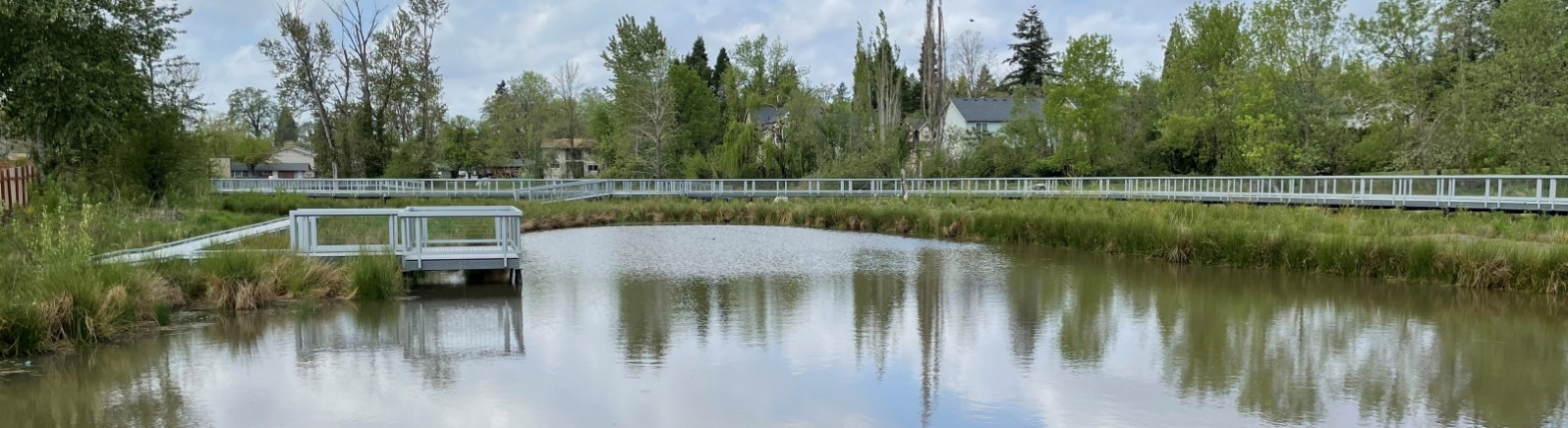 view of pond with paved trails winding around it and a lookout spot on the left side