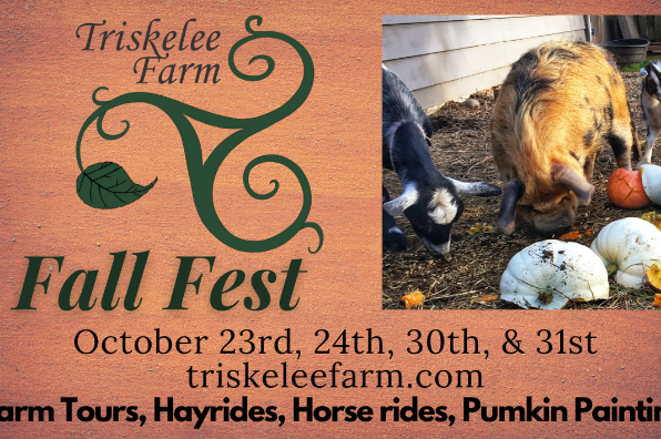 Triskelee Farm Fall Fest