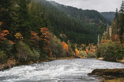 Clackamas River with fall color in Oregons Mount Hood Territory