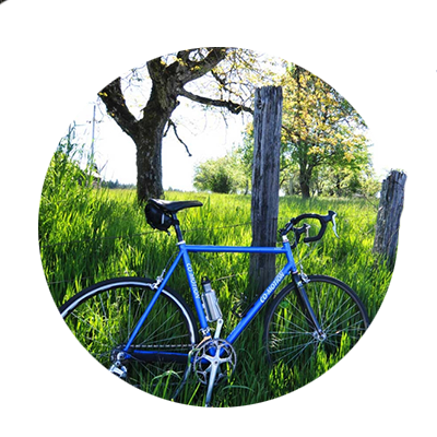 Blue bicycle rests along wire fence's wooden post in the shade of a big tree in tall green grass along the Century Ride route