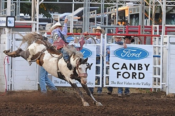 Cowboy riding a bucking bronc at the Clackamas County Fair Rodeo in Canby