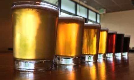 Coin Toss Beer tasting flight brewery in Oregons Mt. Hood Territory
