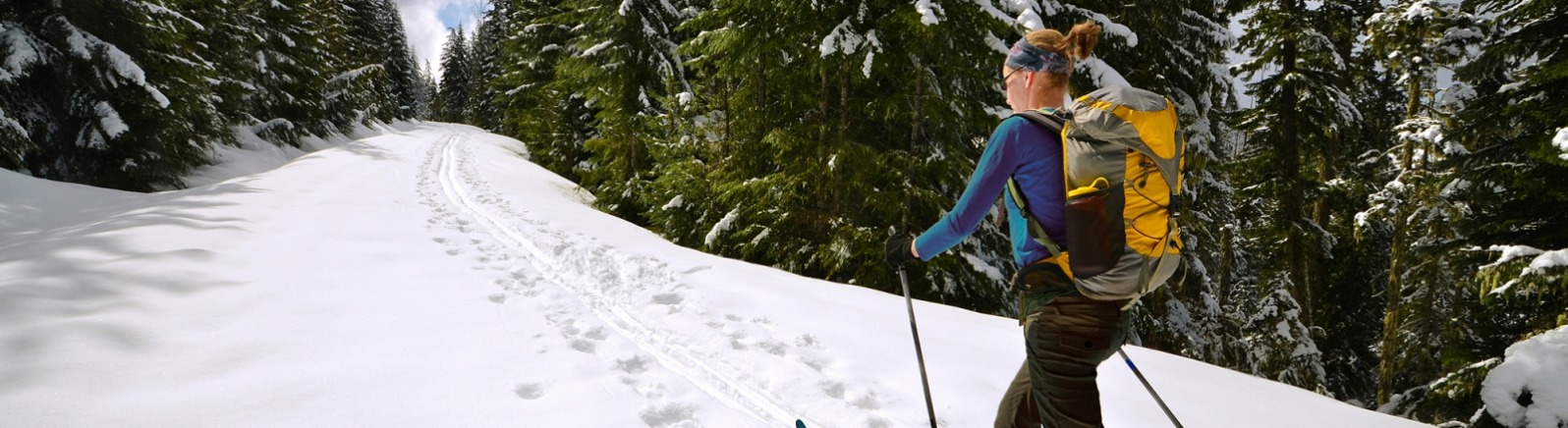 Female cross country skier glides along in the track of an earlier skier on a treelined trail in the Mt. Hood National Forest