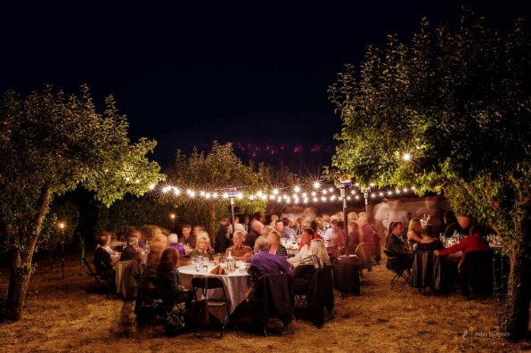 Rows of white lights strung between orchard trees illuminate tables and guests at Field and Vine Events Dinner in the Field