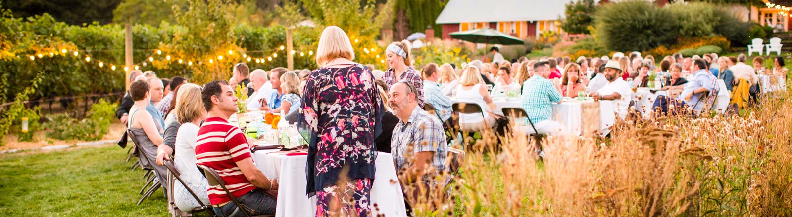 Diners seated at long white linen covered tables on Terra Vina Wines' lawn await their meals at a summer Dinner in the Field.