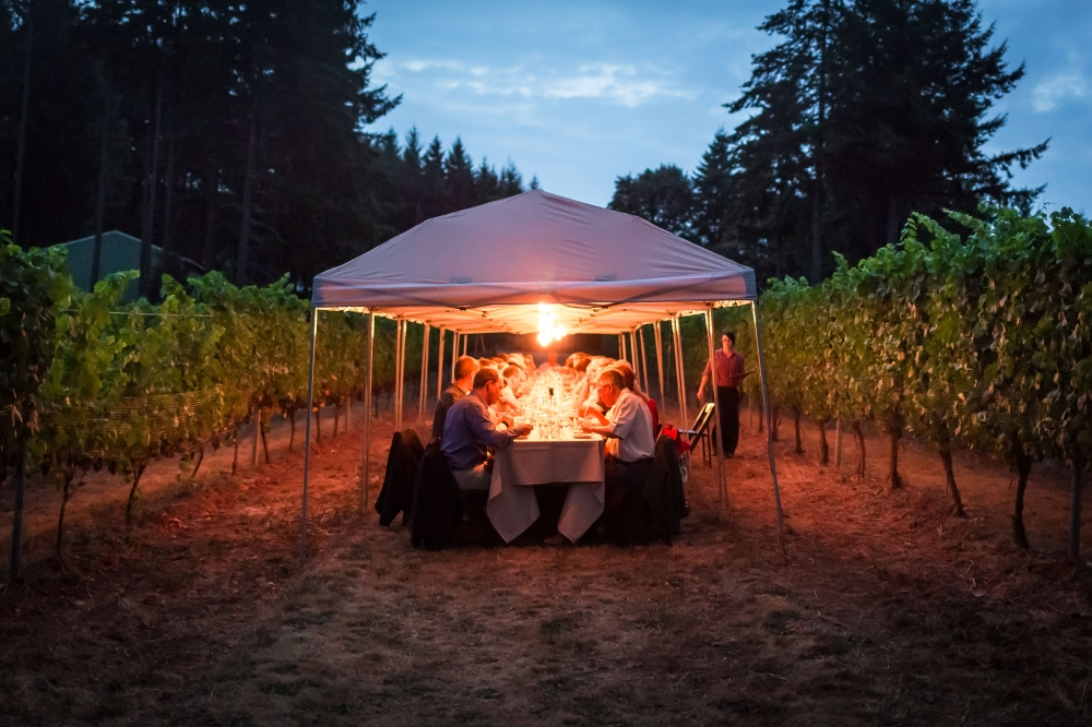 rows of vineyard with people eating dinner under a lit tent at a dinner in the field event