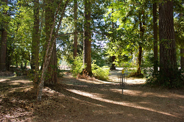 One of the disc golf holes along a heavily shaded forest path at Timber Park in Estacada.