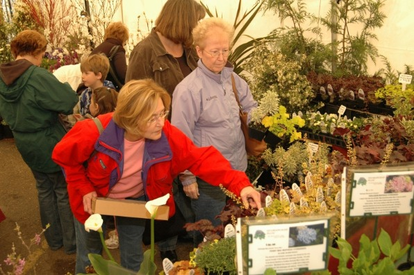 Lady gardener picks out small plants as another woman looks on from a plant vendor s booth at Fir Point Farms GardenPalooza