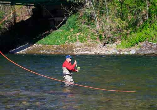 Sandy River Dodge Park Fly Fishing in Oregons Mount Hood Territory
