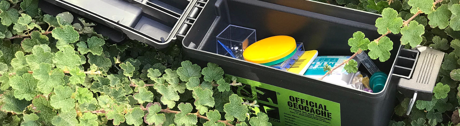 An open Geocaching Box sitting in underbrush contains trinkets for geocachers and the official cache log book with codes