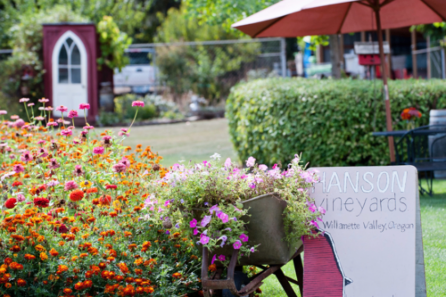Yard of vibrant orange and pink flowers with Hanson Vineyards sign, birdhouse and tall summer shade umbrella over table