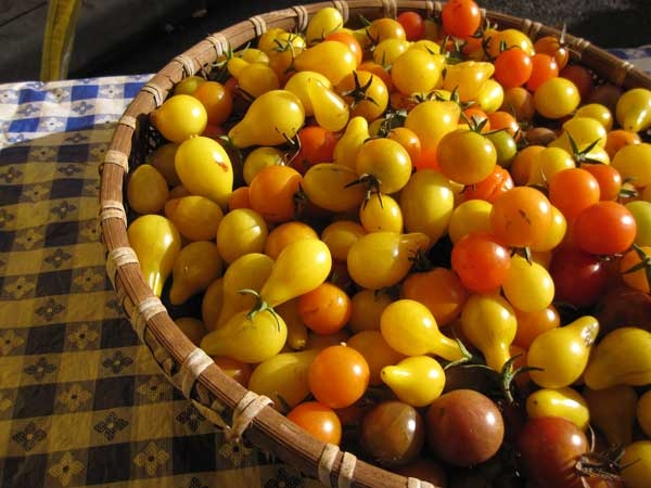 Heirloom Pear Cherry Tomatoes