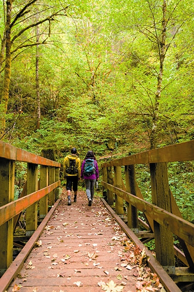Two hikers cross a railed wooden footbridge strewn with fall maple leaves as they head into the Molalla River Recreation Area