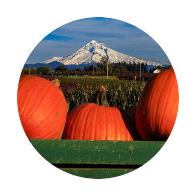 Mt. Hood and Pumpkins fall harvest festival