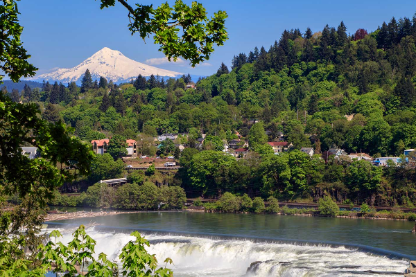 Willamette Falls and Mt Hood in Spring time
