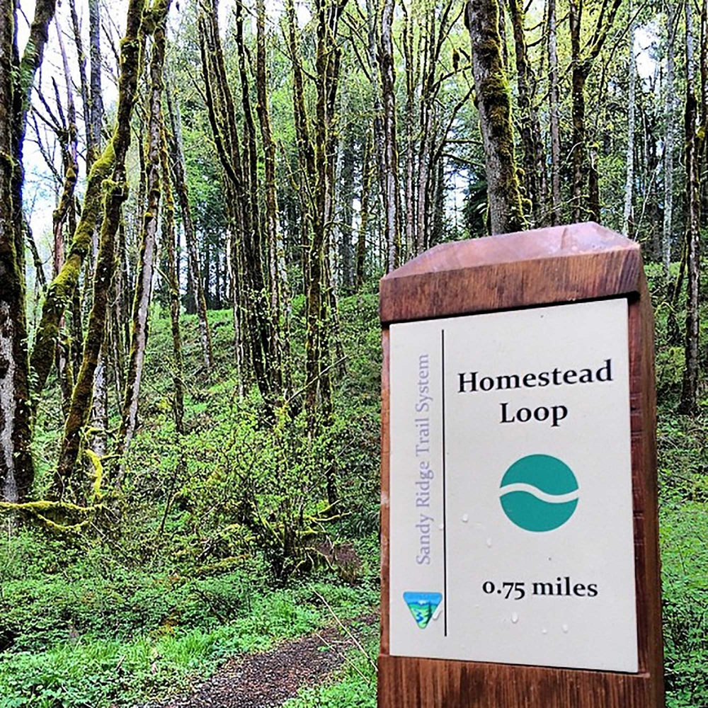 Homestead Loop Trailhead sign in front of forest at the Sandy Ridge Trail System in Oregons Mt. Hood Territory