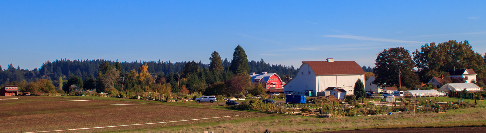 Farmhouse, barn and farm buildings are seen across plowed fields and rows of planted vegetables at Luscher Farm in Lake Oswego
