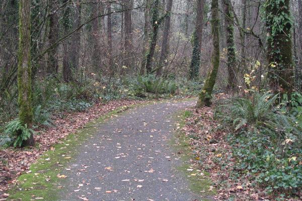 Mary S Young Park Path, West Linn
