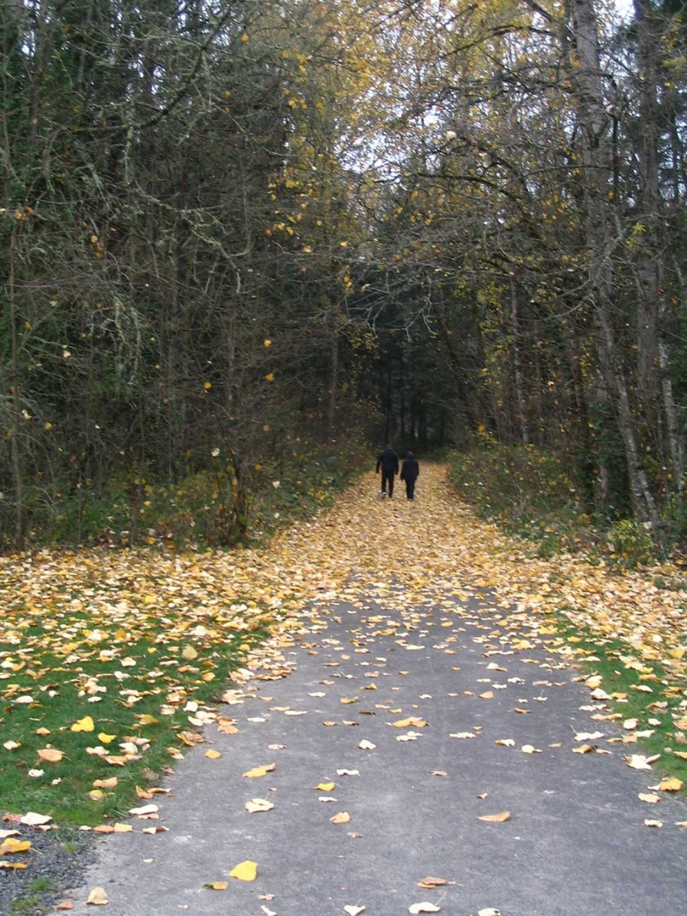 Mary S Young Park, Walking Couple, West Linn