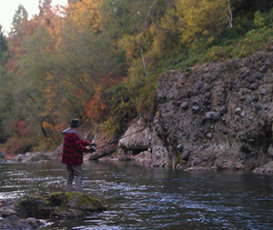 Autumn foliage covers the bank as a fisherman standing on rock in river casts his line in hopes of catching a fall Chinook