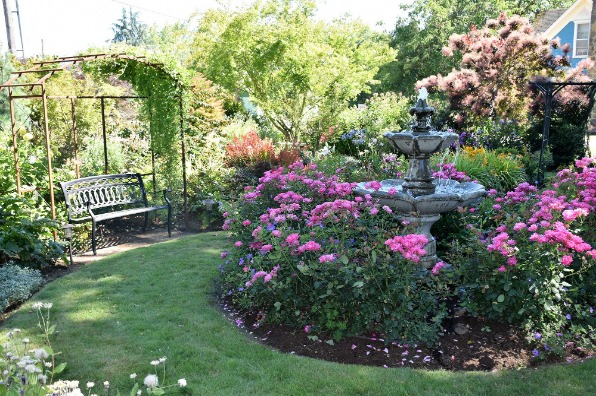 Garden bench under a trellis and 3-tiered fountain bubbling with water surrounded by a circle of pink dahlias