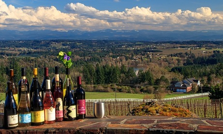 13 wine bottles from participating Wine trial wineries and stainless wine glass staged on rock wall rim with view of valley.