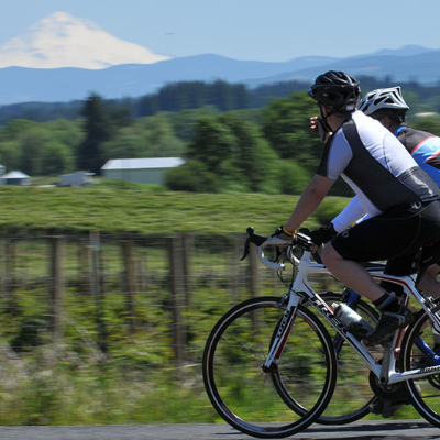 Two bicyclists on counrtry road pass by vineyard and farm buildings with foothills and Mt. Hood seen through the summer haze