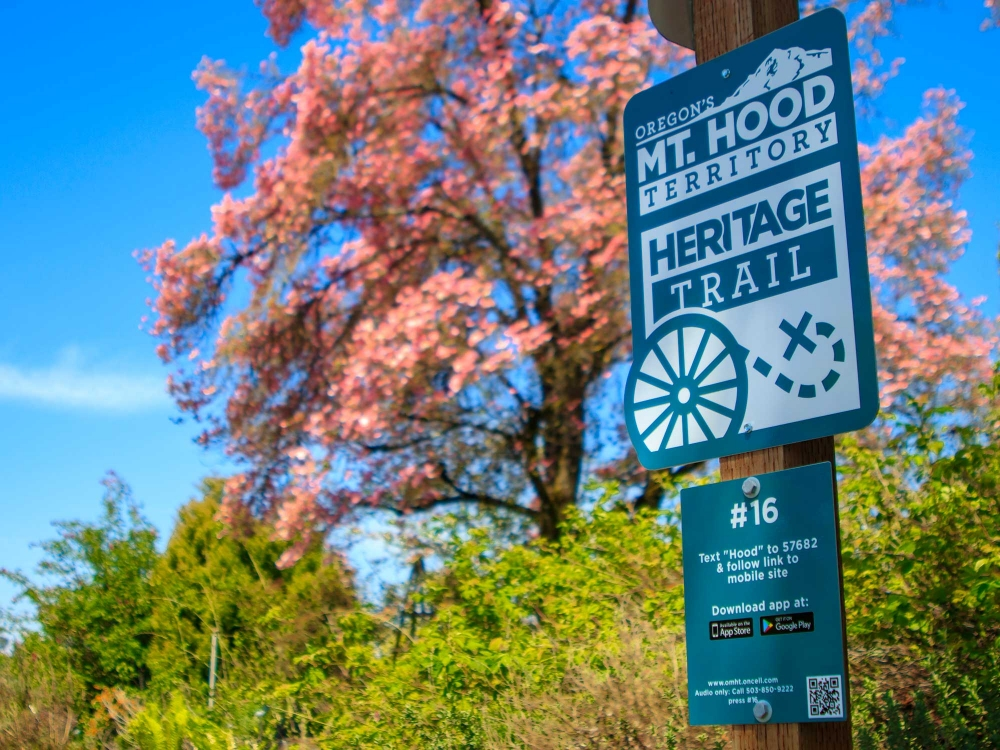 Posted Mt. Hood Territory Heritage trail sign for site #16, Rogerson Clematis Garden, with pink dogwood tree in background.