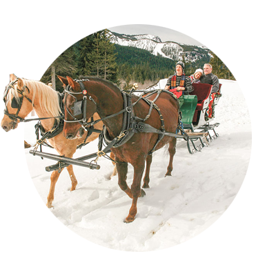 Sleigh driver guides his horse team through the snow as bundled up couple snuggle in backseat of sleigh at Mt. Hood Skibowl