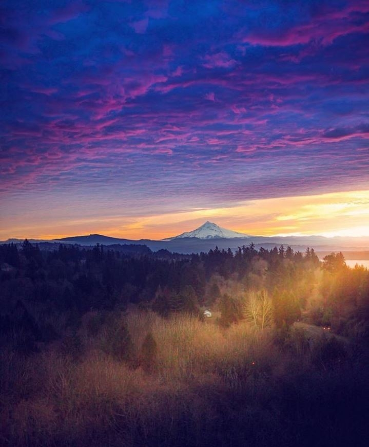 sunrise with sun beaming over valley and mt hood in the distance with pink and purple sky