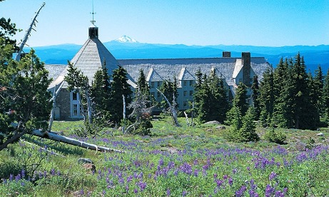 Back side of Timberline Lodge looking towards Mt. Jefferson with meadow of lupine in forefront in Mt. Hood Territory.