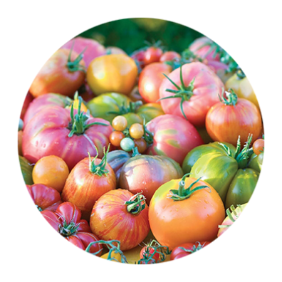 Circular photo close-up of red and green heirloom tomatoes and clusters of multi-colored grape tomatoes.