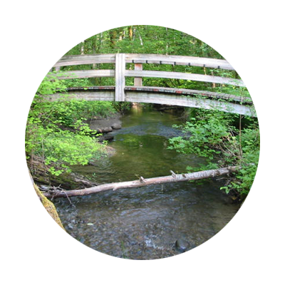 Arching wooden footbridge with Salmon River flowing beneath amid forest greenery at Wildwood Recreation Site near Welches