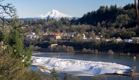 A winter view of Willamette Falls